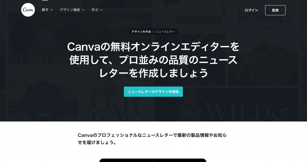 Screenshot on Canva